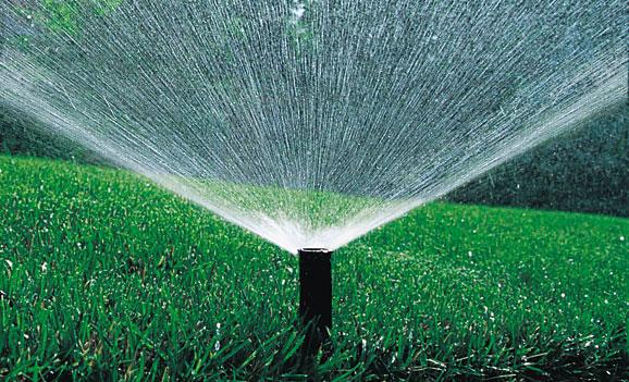 The sprinkler system